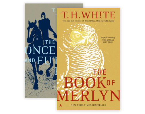 The Book of Merlyn (Once and Future King)