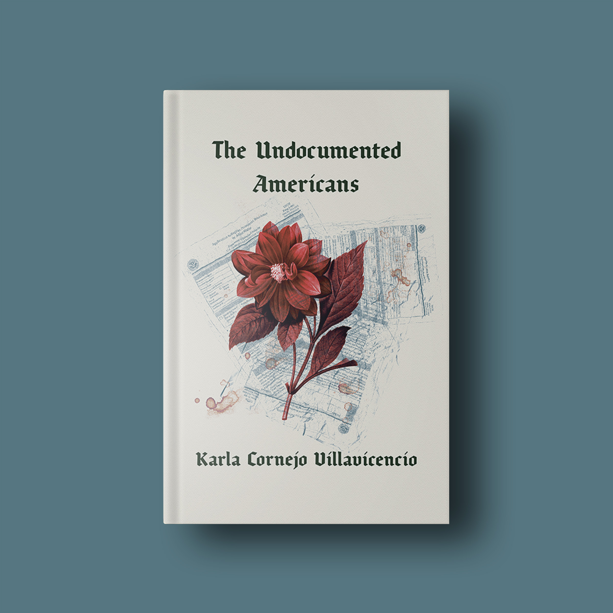 The Undocumented Americans Excerpt