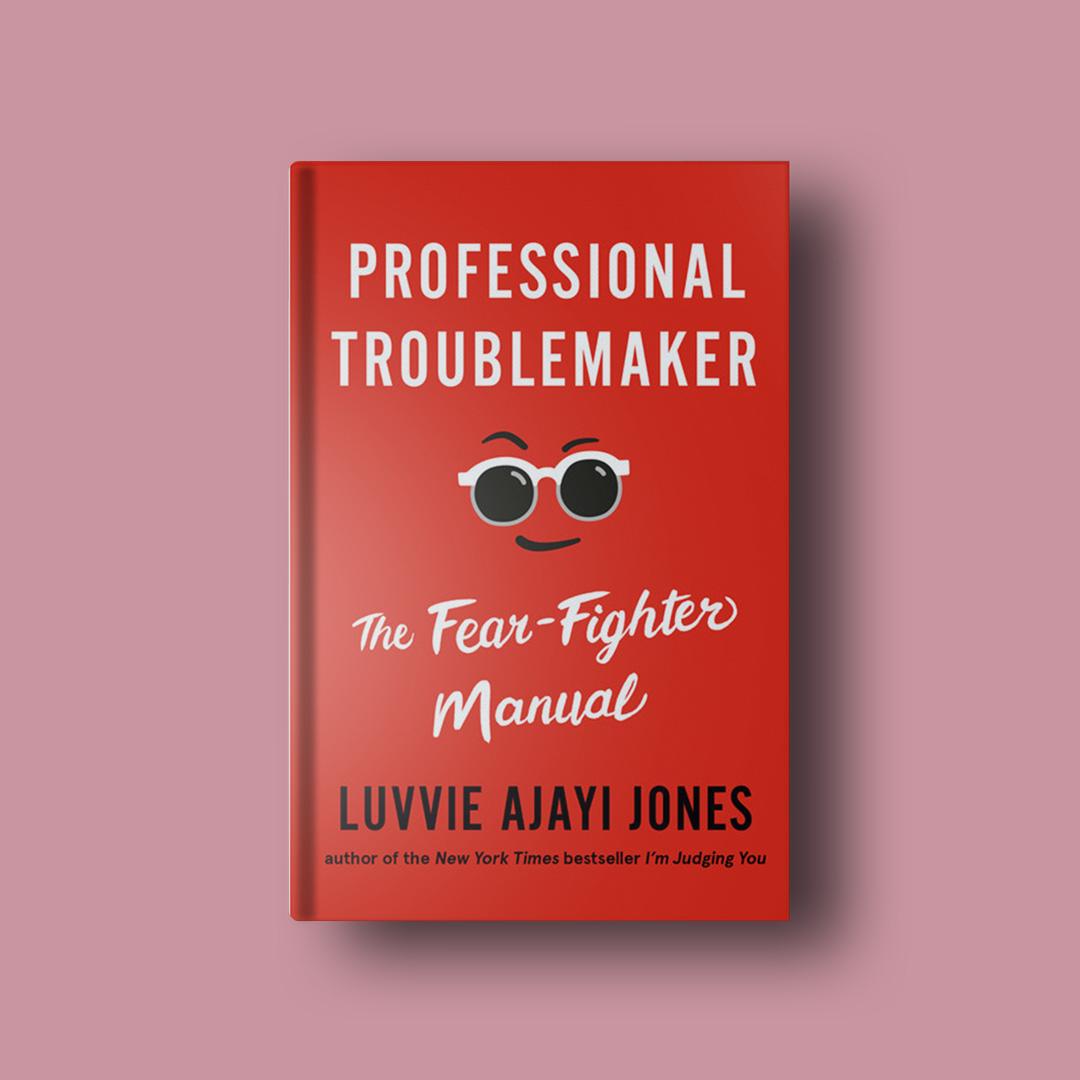 Professional Troublemaker  Excerpt