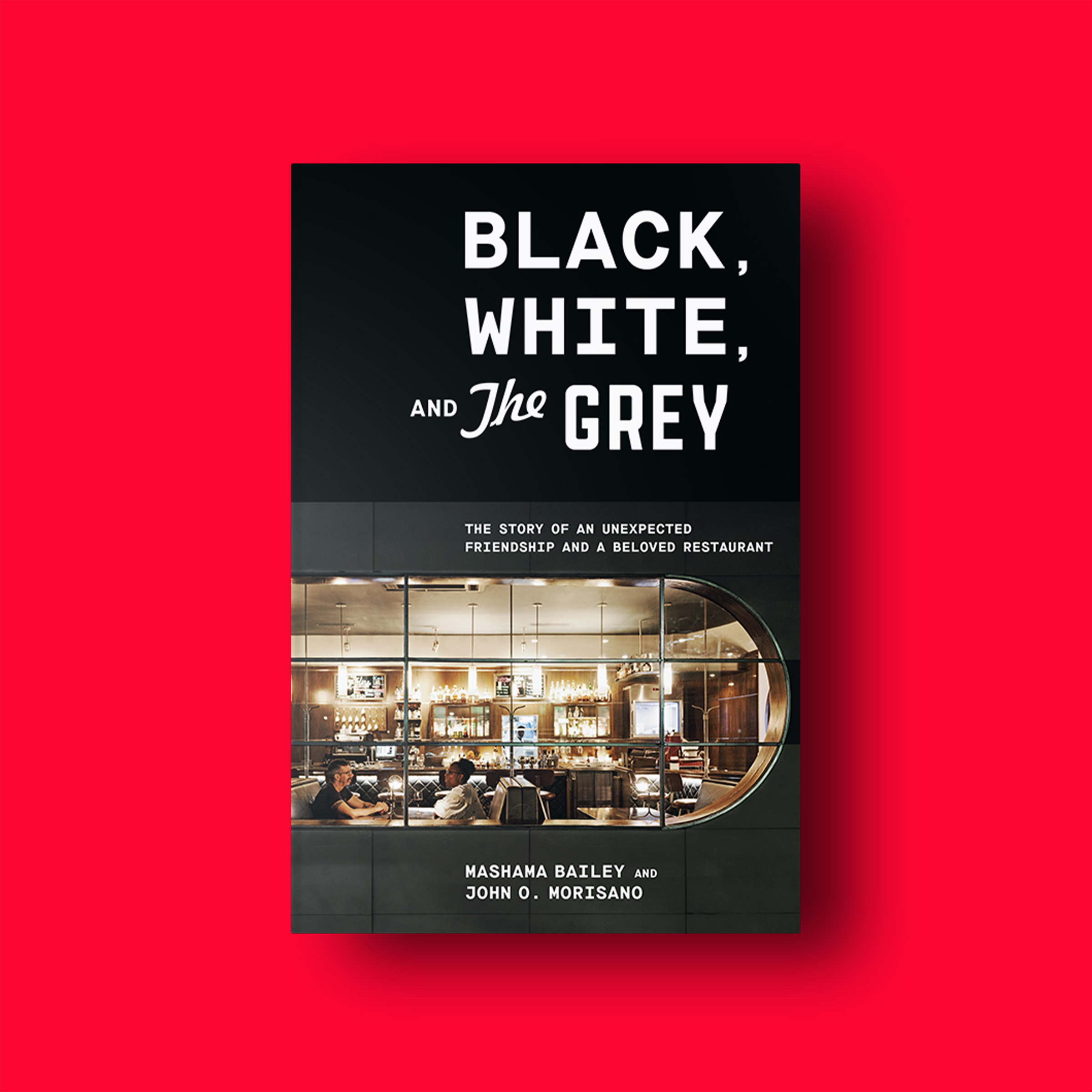Black, White, and The Grey Excerpt